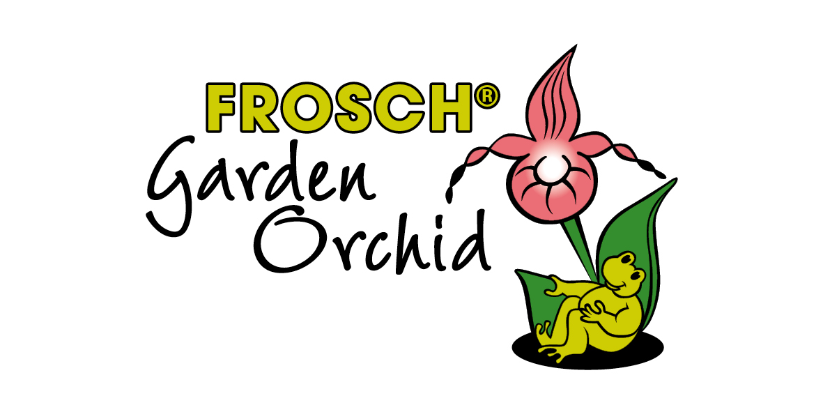 Frosch Cypripedium